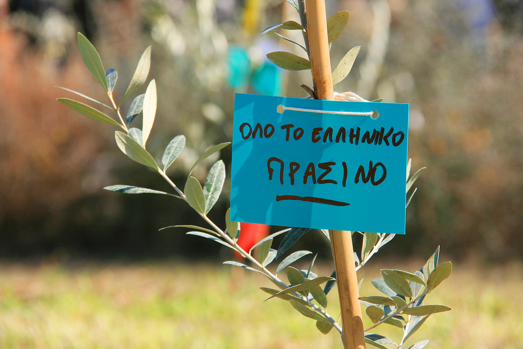 Νέα δεντροφύτευση στο Ελληνικό, Κυριακή 31 Μαρτίου