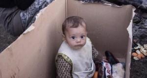 Ζωή μες στο κουτί